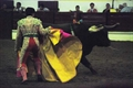 Imagens da Corrida de toiros em Moura