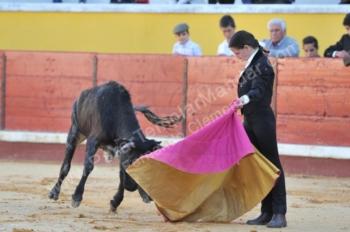Novos Valores: Paula Santos