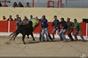 Amadores do Ribatejo e Riachos treinam na Azambuja