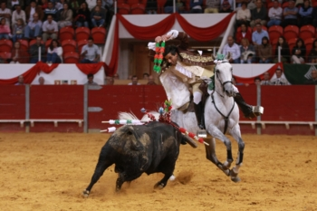 Associação Portuguesa do cavalo Luso-Árabe, distinguiu a égua VIAJANTE