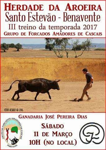 Amadores de Cascais com treino marcado a 11 de março