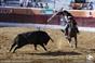 As imagens da corrida de Reguengos de Monsaraz