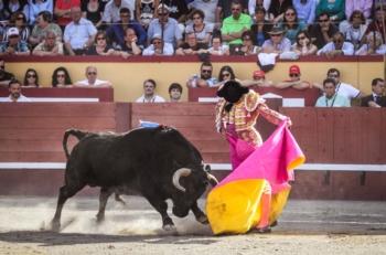 Atuação completa de José Garrido no encerramento a pé das Sanjoaninas