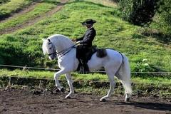 II Passeio Equestre em Garvão
