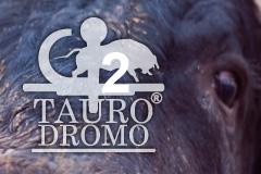 Taurodromo.com anuncia o segundo tércio para 8 de Junho