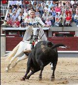 Cavaleiro Rui Fernandes triunfa em Espanha