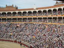 Triunfadores Taurodelta em Madrid