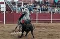 Imagens do 1º Festival Taurino da Tertúlia Tauromáquica de Estremoz