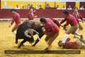 Imagens da Corrida de Toiros em Redondo