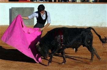 Paco Velasquez prepara-se na ganadaria