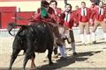 Imagens da corrida de Vila Franca de Xira, 6 de Maio de 2012