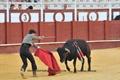 As imagens de Pedro Cunha em Málaga