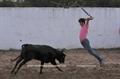 Academia do Campo Pequeno  tenta na ganadaria de Lopes Branco