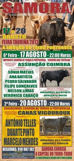 Toiro-Toiro em Samora Correia dias 17 e 20 de Agosto