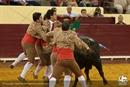 Fotos da corrida Campo Pequeno, 06 de Setembro de 2012