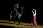 Gala Equestre no Coliseu de Redondo