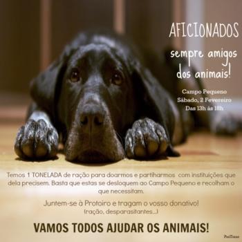 Aficionados Sempre Amigos dos Animais: Este Sábado Vamos Todos Ajudar!