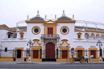 Os Carteis de Sevilla