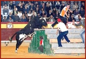 Morreu Ratón, rei dos festejos populares em Espanha