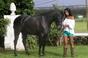 25º Festival Internacional do Cavalo Lusitano dias 20, 21, 22 e 23 de Junho
