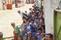Imagens dos Festejos Populares de São Pedro no Montijo