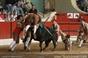 Imagens da corrida de toiros em Setubal