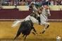 Campo Pequeno, Fotos da XLIX grande corrida TV