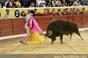 Imagens da primeira da feira taurina da Moita