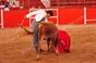 Imagens do Festival Taurino de Vila Boim