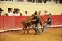 Mais Imagens da Festa do Forcado em Évora