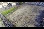 Milhares de aficonados do norte juntaram-se em Ponte de Lima para a Vaca das Cordas