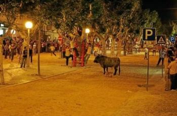 Largada de touros faz dois mortos na Moita