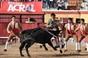As imagens do festival de Vila Franca de Xira