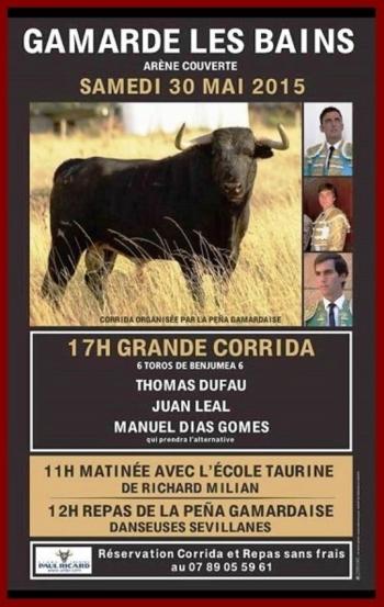 O cartaz da alternativa de Manuel Dias Gomes