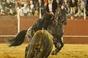 As imagens da corrida de Santana da Serra