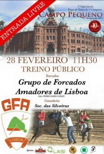 Campo Pequeno acolhe treino público dos Amadores de Lisboa