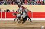 As imagens da corrida da Azambuja