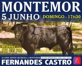 Toiros de Fernandes de Castro regressam a Montemor