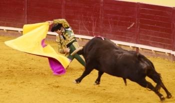 Fim-de-semana triunfal para Padilla