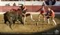 As imagens da corrida do dia de Páscoa em São Maços