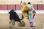 As imagens da corrida da Chamusca