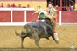 As imagens da corrida da Ovibeja