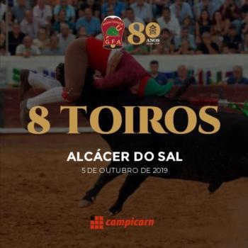 8 TOIROS - Um toiro por cada década de História