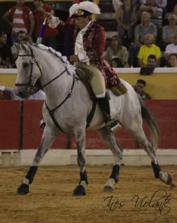 António Núncio e Luís Silva destacaram-se na Novilhada da Feira da Moita