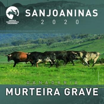 Sanjoaninas 2020